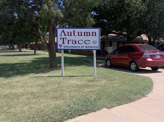 Autumn Trace